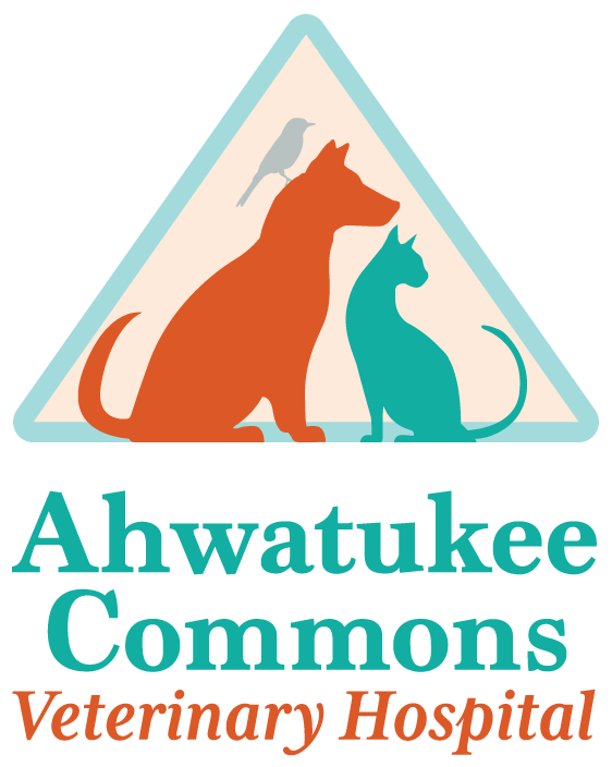 Ahwatukee Commons Veterinary Hospital logo